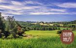 石迎军在济源示范区乡村产业发展座谈会上强调 让农业产业化在新发展格局中发挥更大作用