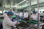 信阳浉河区:科技兴茶助发展