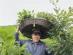 河南鲁山:我为群众办实事 上山下乡帮移蚕