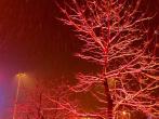 雪夜-徐州迎来鸡年第一场雪