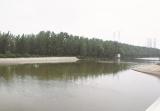 徐州泉山区打造优美水环境造福百姓