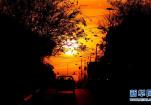 在哥斯达黎加圣何塞岛拍摄日落时分景色