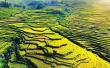 福建尤溪联合梯田申报全球重要农业文化遗产