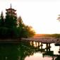 邳州公园-桃花岛