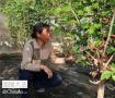长海县海岛生态采摘游成为农民增收致富新亮点