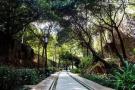 """石家庄要添""""西环公园"""" 中山路要建园林步行街"""
