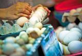 鸡年鸡蛋流年不利 价格跌至历史最低