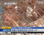 鸡蛋价格最近要卖到5元一斤 专家解读涨价三大原因