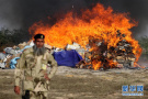 巴基斯坦销毁毒品