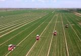 减产15%粮农为何说值 嵊州粮农学算生态农业这笔账
