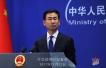 津国防军司令曾与中方讨论让穆加贝下台?中方回应