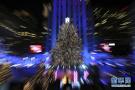 洛克菲勒点亮圣诞树