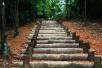 湖水与林荫相伴,杭州首条城区国家登山步道坐落在这里
