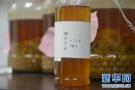 中华传统医药漫谈:酵素在养生中都有什么功用?