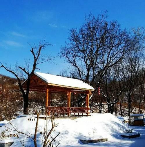滑雪、赏雪、体验雪地速度与激情今冬滑雪就来白云小镇•冰雪乐园