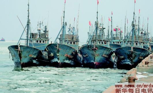 北京赛车PK10技巧:黄渤海严重冰期来了!渔船冻在港,海参忙吸氧