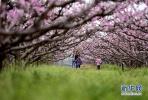 济南10大春游野餐好去处 周末玩去吧!