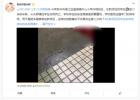 苏州一女教师校园内驾车撞死学生 已被警方控制