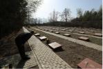 心酸!数千名烈士埋骨 88岁老兵几十年如一日清明节祭奠战友
