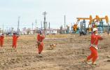 """中石油""""卖电公司""""完成重组 下一步将谋划改制上市"""