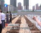 新郑九裕龙城旁边建大片墓地 开发商称不知情