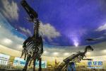 科幻电影终究几分假 科学家称复活恐龙毫无希望