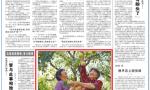 人民日报:宿迁推动农业特色种植 发展高效生态农业