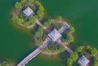 废弃坑塘变生态公园