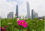 """中国16城市开年升级人才政策 """"抢人大战""""未退潮"""