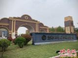 郑州一高校辅导员强制学生报考职业资格证 称和毕业证挂钩