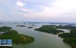 秦市召开大气和水污染防治重点工作调度会