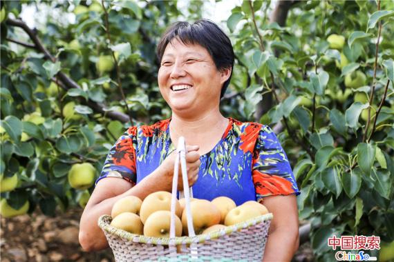 河南鲁山县创新工作模式 推动基层党建工作提质增效