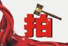 南京市国土资源局再次公告出让13幅地块