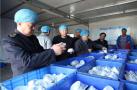 辽宁省开展餐具、饮具集中消毒专项监督检查行动