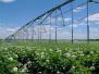 2017马铃薯高效种植研讨会 沃丰农业携新品肥料领风潮
