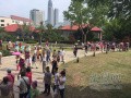 烟台山景区游客激增4倍 免票新政连锁反应逐渐显现