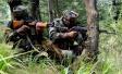 印巴连续2天猛烈交火致印方损兵折将 印媒求破冰