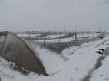江苏的这场雪直接损失就4100多万元 苏南受灾严重