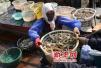 胶州53岁渔民出海直播成网红 日售海鲜四五万元