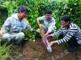 3学霸弃高薪回乡当农民 用科技种植带动乡亲致富