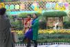 郑州人民公园金秋菊展开幕 周末等你过来玩