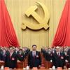 选举中央委员会