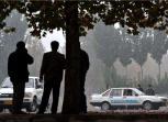 考完科目一就敢上路行驶,镇海22岁女孩因无证驾驶被拘留
