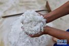 阔别十余年青岛海盐重回餐桌 含70多种微量元素
