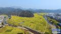山东临沂推进旅游特色镇村建设 培植旅游产业