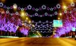 这座城市用灯光写给你一封情书 收到了吗?