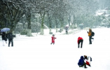 暴雪!大暴雪!最冷時段開啟 零下低溫持續到2月