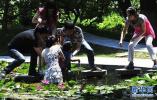 年轻女子长湖桥跳河 邯郸群众紧急相救