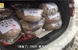 南京大学生为流浪猫备700斤粮 帮它们过冬