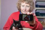 黑猫不受待见又多了一条奇葩理由:居然因为拍照不好看